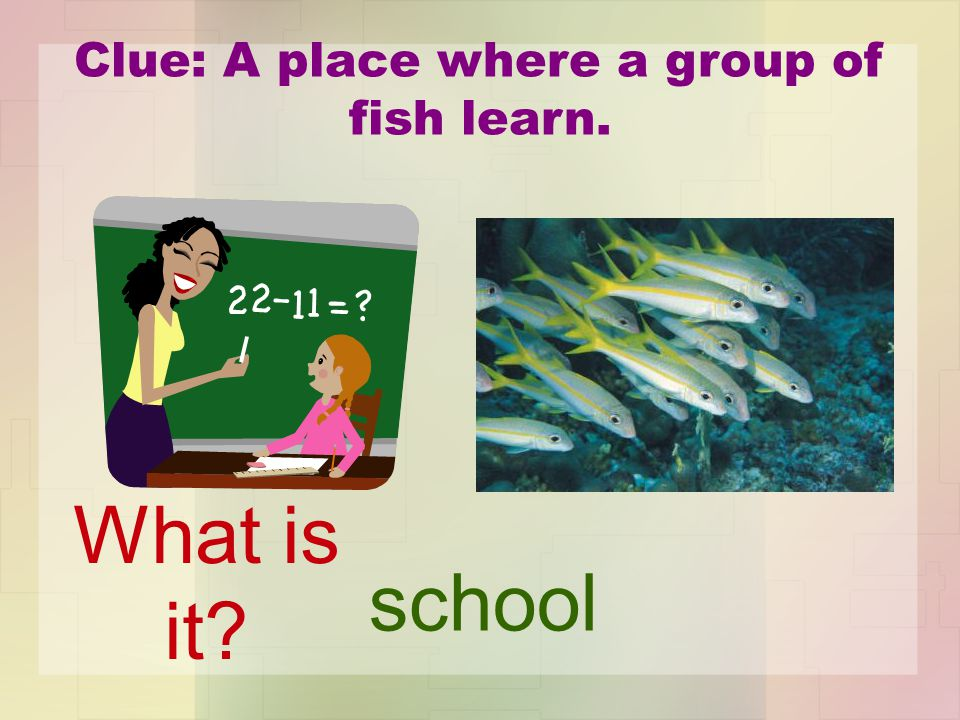 Clue: A place where a group of fish learn. school What is it?