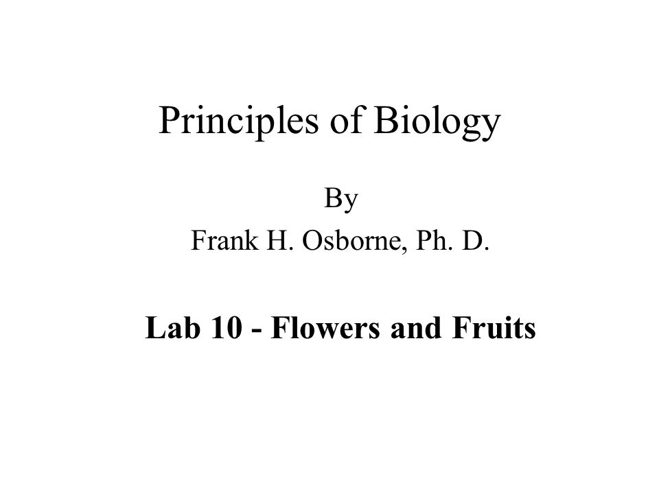 Principles of Biology By Frank H. Osborne, Ph. D. Lab 10 - Flowers and Fruits