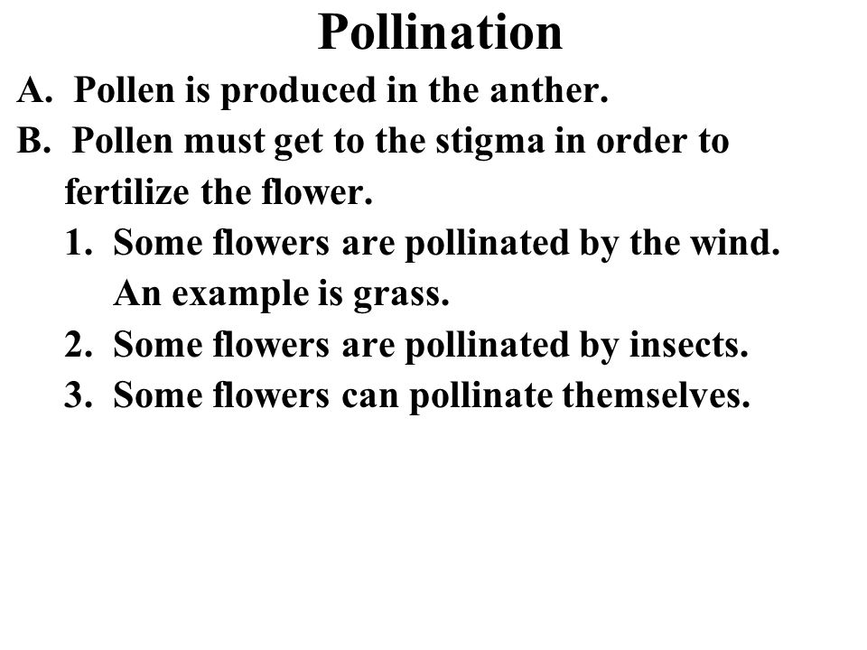 Pollination A. Pollen is produced in the anther. B. Pollen must get to the stigma in order to fertilize the flower. 1. Some flowers are pollinated by