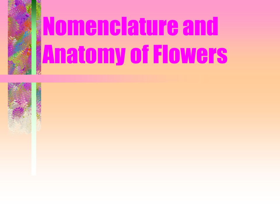 Nomenclature and Anatomy of Flowers