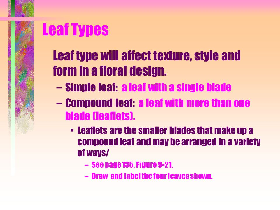 Leaf Types Leaf type will affect texture, style and form in a floral design. –Simple leaf: a leaf with a single blade –Compound leaf: a leaf with more