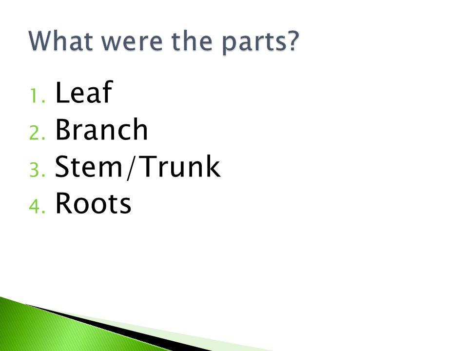 1. Leaf 2. Branch 3. Stem/Trunk 4. Roots