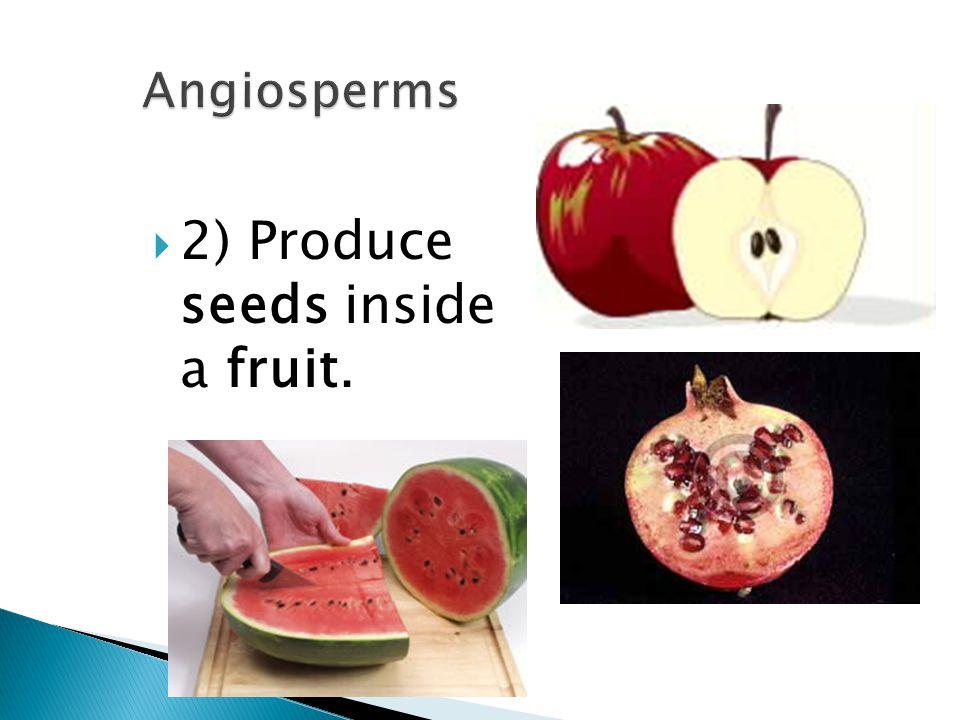  2) Produce seeds inside a fruit.