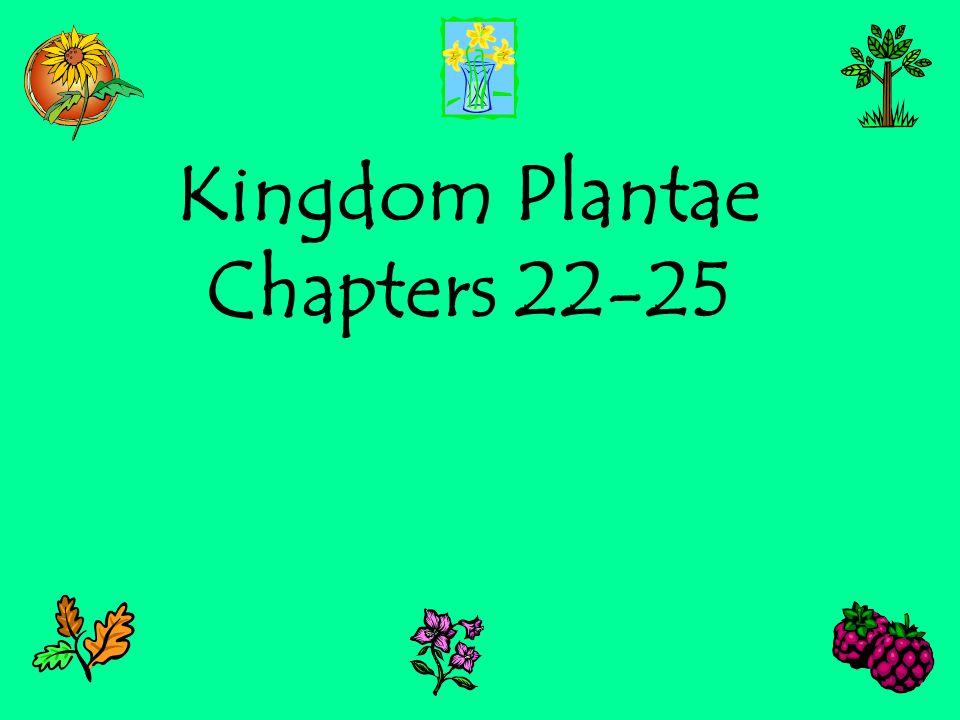 Kingdom Plantae Chapters 22-25