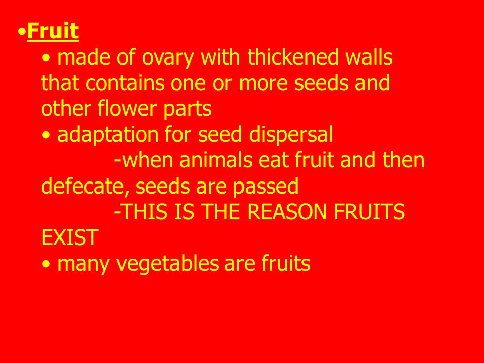 Fruit made of ovary with thickened walls that contains one or more seeds and other flower parts adaptation for seed dispersal -when animals eat fruit and then defecate, seeds are passed -THIS IS THE REASON FRUITS EXIST many vegetables are fruits