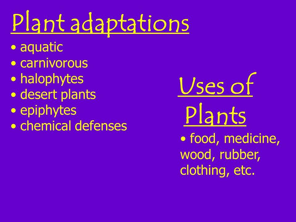 Plant adaptations aquatic carnivorous halophytes desert plants epiphytes chemical defenses Uses of Plants food, medicine, wood, rubber, clothing, etc.