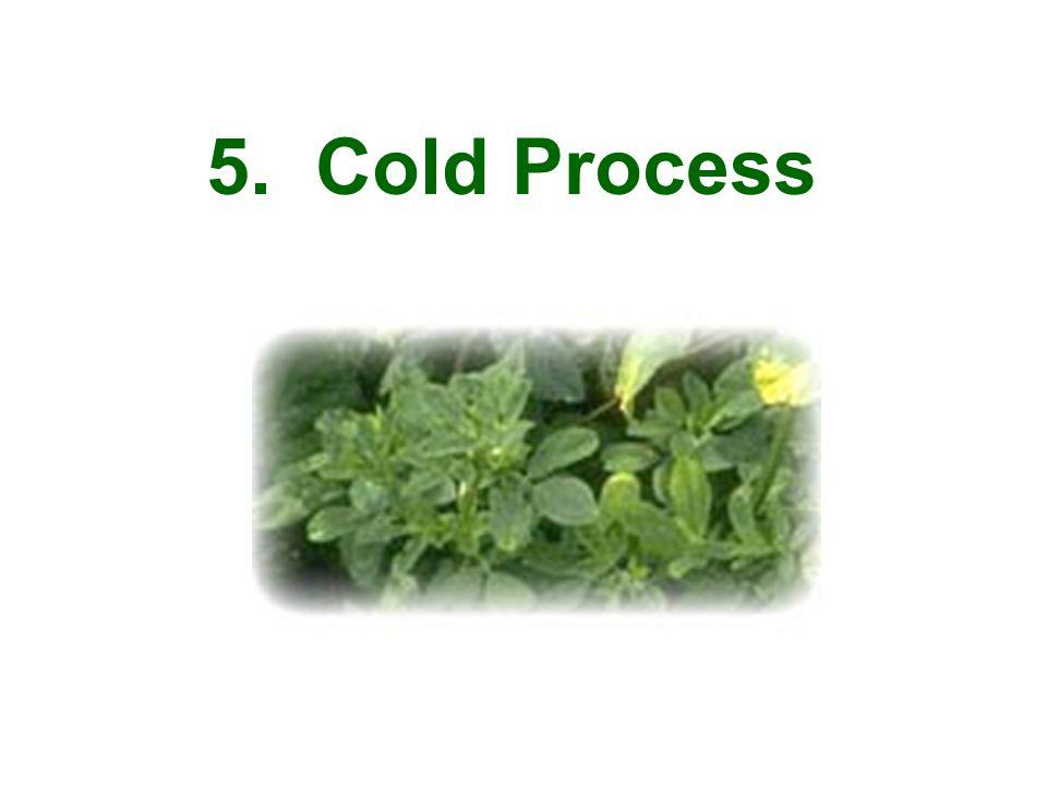 5. Cold Process