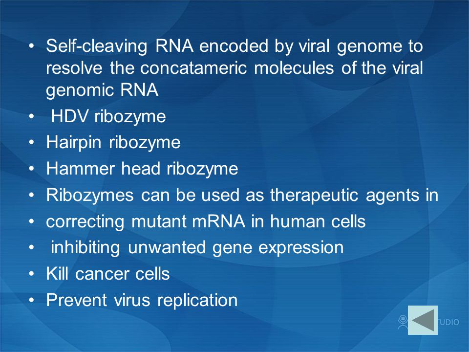 Self-cleaving RNA encoded by viral genome to resolve the concatameric molecules of the viral genomic RNA HDV ribozyme Hairpin ribozyme Hammer head rib