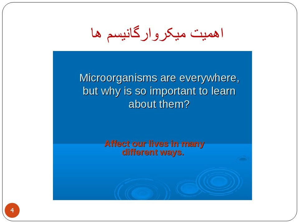 Importance of Microbiology 5