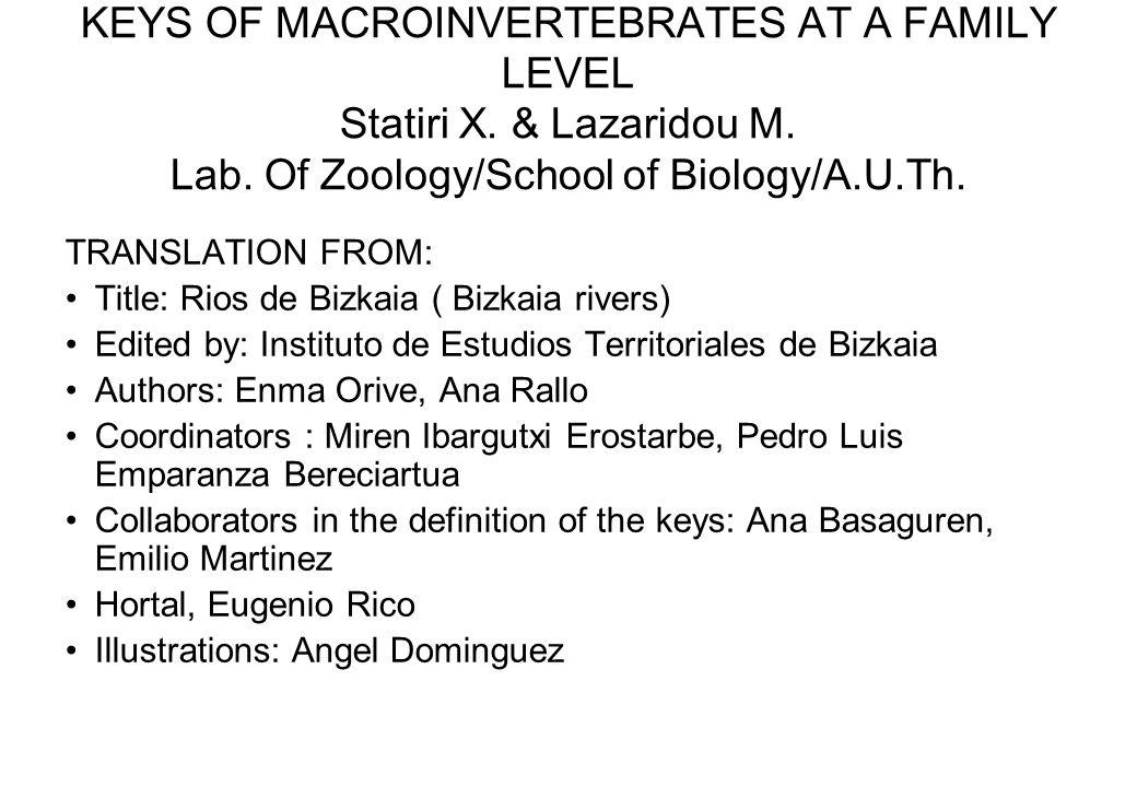 KEYS OF MACROINVERTEBRATES AT A FAMILY LEVEL Statiri X. & Lazaridou M. Lab. Of Zoology/School of Biology/A.U.Th. TRANSLATION FROM: Title: Rios de Bizk