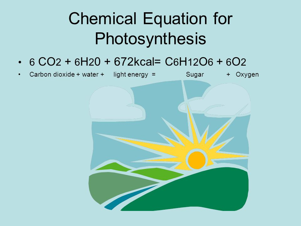Chemical Equation for Photosynthesis 6 CO 2 + 6 H 2 0 + 672kcal= C 6 H 12 O 6 + 6 O 2 Carbon dioxide + water + light energy = Sugar + Oxygen