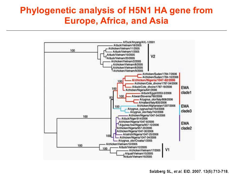 Phylogenetic analysis of H5N1 HA gene from Europe, Africa, and Asia Salzberg SL, et al. EID. 2007. 13(5):713-718.