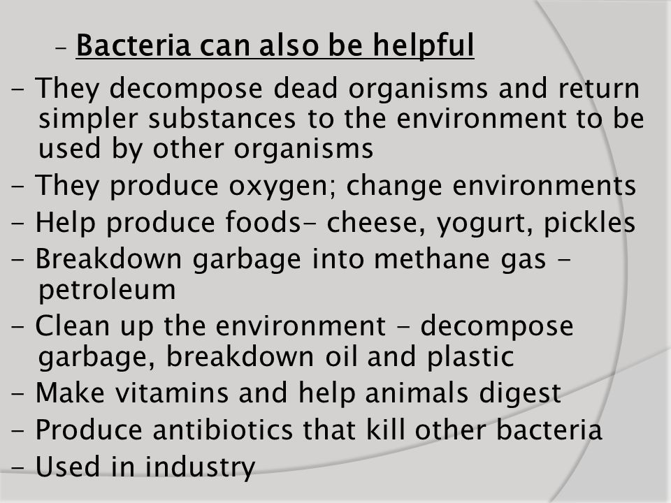 - Bacteria can also be helpful - They decompose dead organisms and return simpler substances to the environment to be used by other organisms - They p