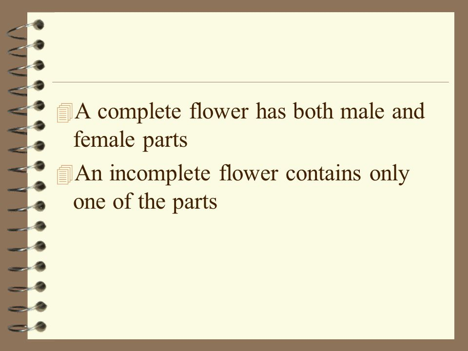 4 A complete flower has both male and female parts 4 An incomplete flower contains only one of the parts