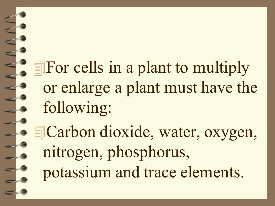 4 For cells in a plant to multiply or enlarge a plant must have the following: 4 Carbon dioxide, water, oxygen, nitrogen, phosphorus, potassium and tr