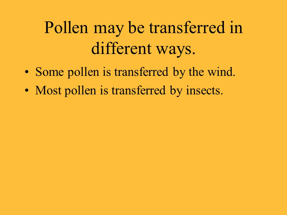 Pollen may be transferred in different ways.Some pollen is transferred by the wind.