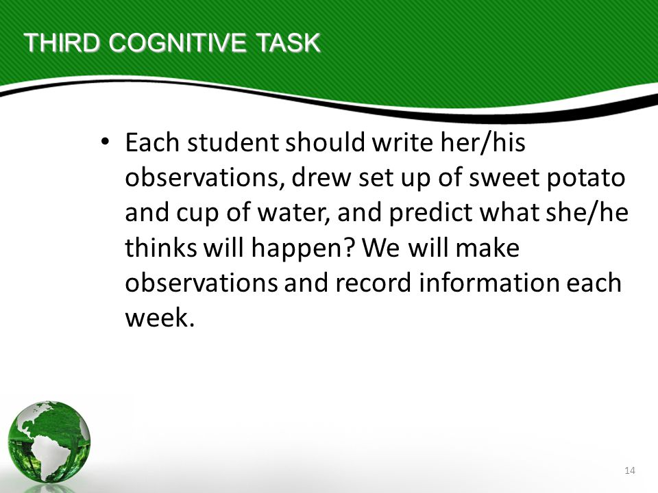 14 THIRD COGNITIVE TASK Each student should write her/his observations, drew set up of sweet potato and cup of water, and predict what she/he thinks will happen.