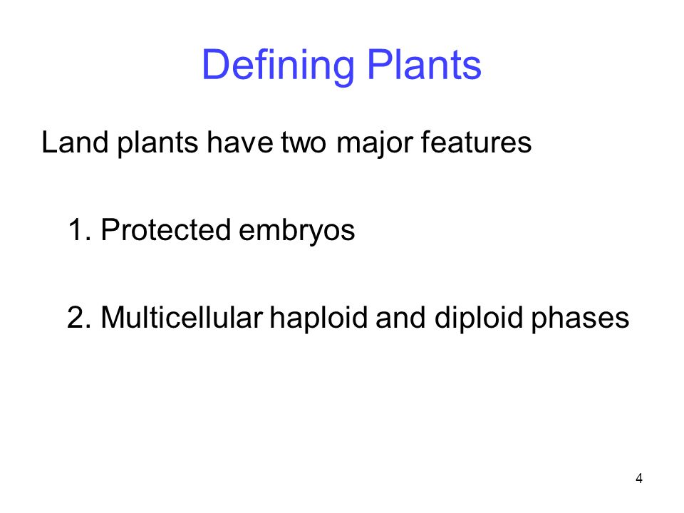 4 Land plants have two major features 1. Protected embryos 2. Multicellular haploid and diploid phases