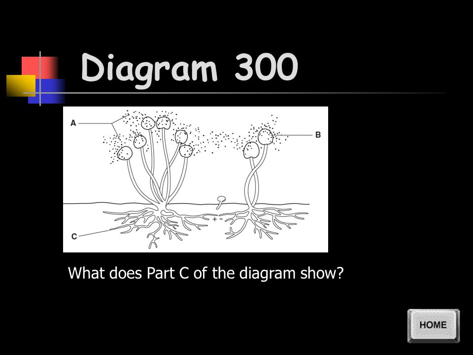 Diagram 200 What does Part B of the diagram show
