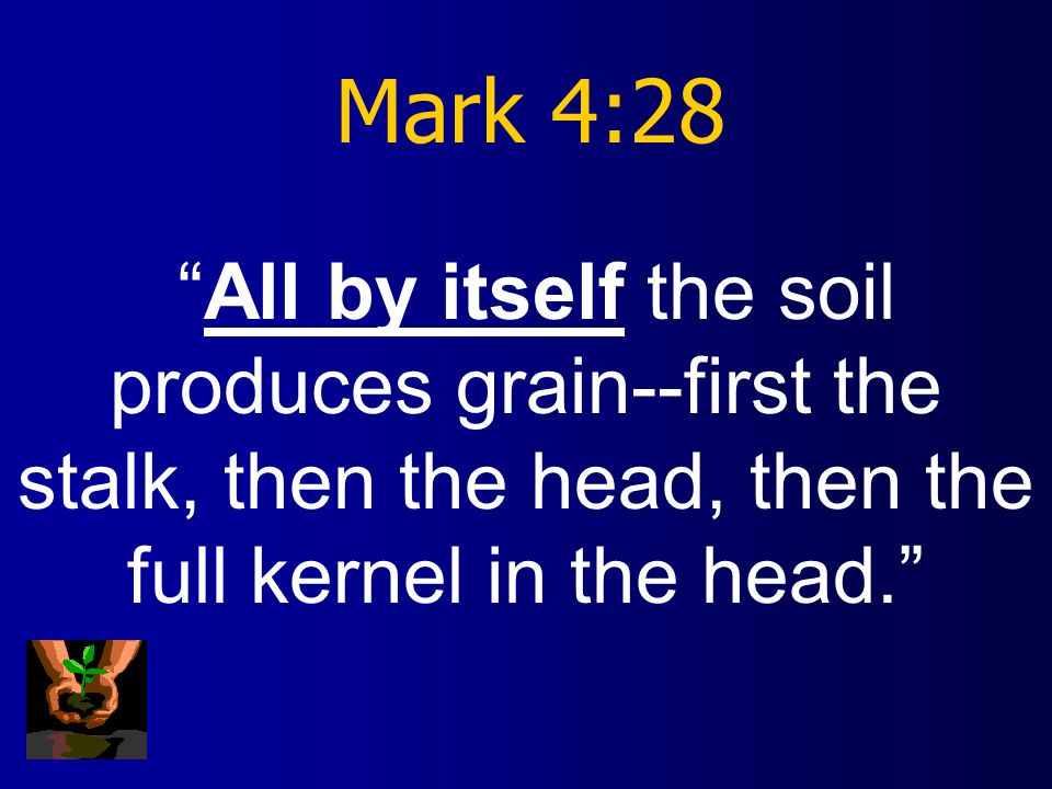 Mark 4:29 As soon as the grain is ripe, he puts the sickle to it, because the harvest has come.