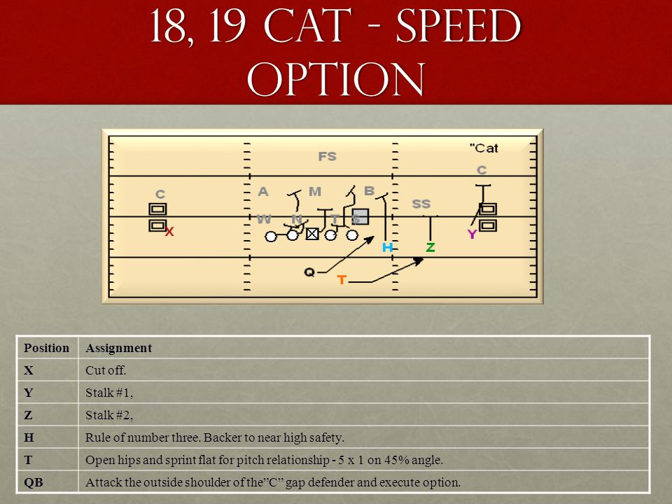 18, 19 Cat - Speed Option PositionAssignment XCut off. YStalk #1, ZStalk #2, HRule of number three. Backer to near high safety. TOpen hips and sprint