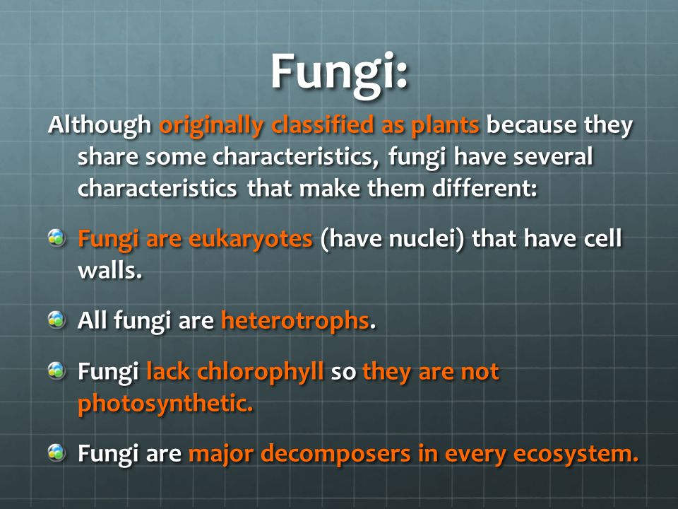 Fungi: Although originally classified as plants because they share some characteristics, fungi have several characteristics that make them different: