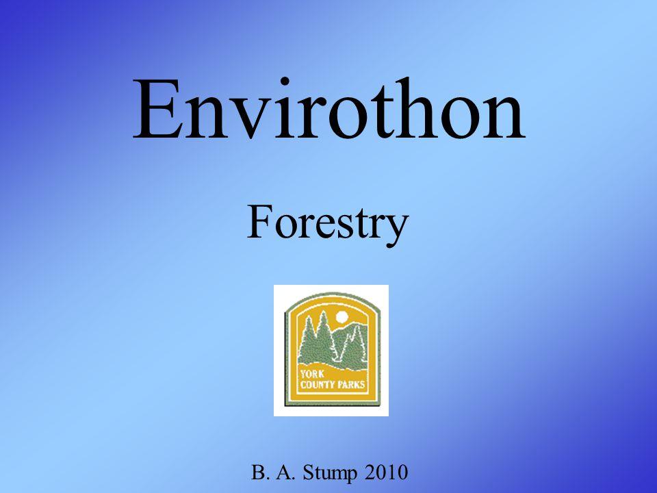 Forestry Envirothon B. A. Stump 2010