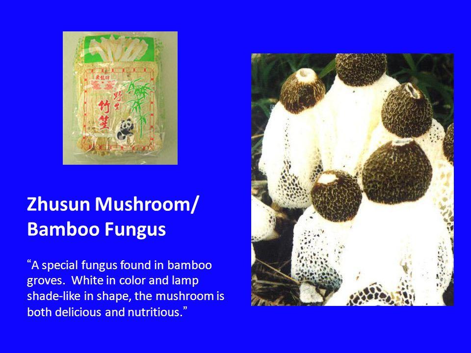 Zhusun Mushroom/ Bamboo Fungus A special fungus found in bamboo groves.