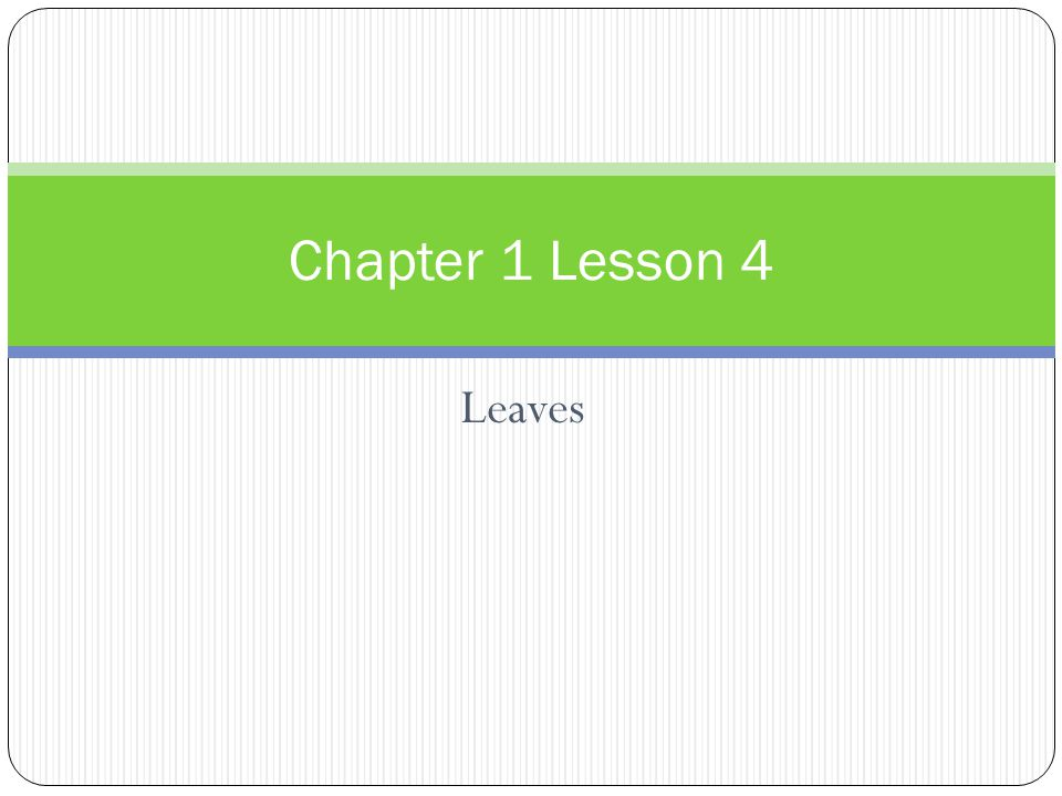 Leaves Chapter 1 Lesson 4