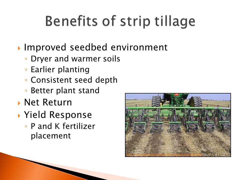  Improved seedbed environment ◦ Dryer and warmer soils ◦ Earlier planting ◦ Consistent seed depth ◦ Better plant stand  Net Return  Yield Response ◦ P and K fertilizer placement http://www.bighambrothers.com/strip-till-examples.htm