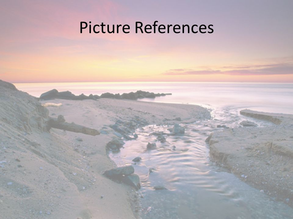 Picture References