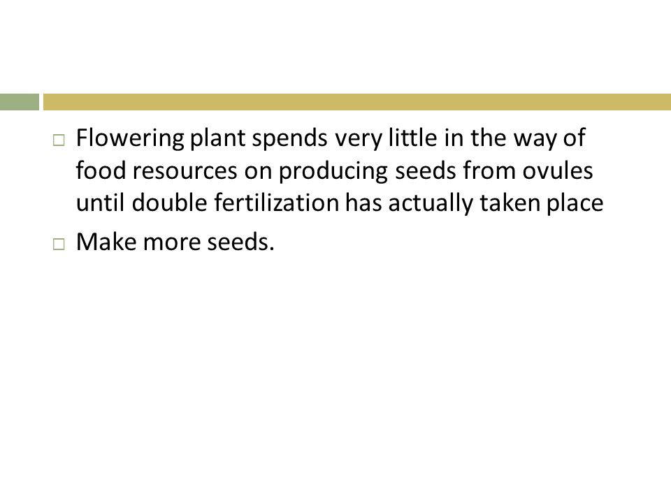  Flowering plant spends very little in the way of food resources on producing seeds from ovules until double fertilization has actually taken place 