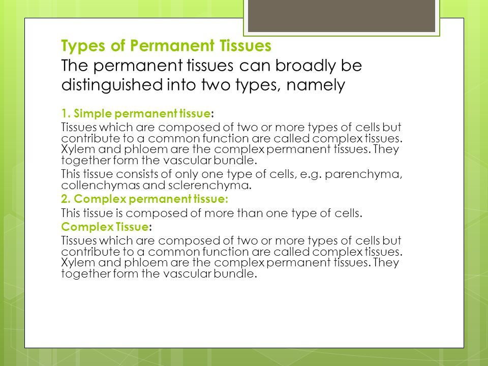 Types of Permanent Tissues The permanent tissues can broadly be distinguished into two types, namely 1. Simple permanent tissue: Tissues which are com