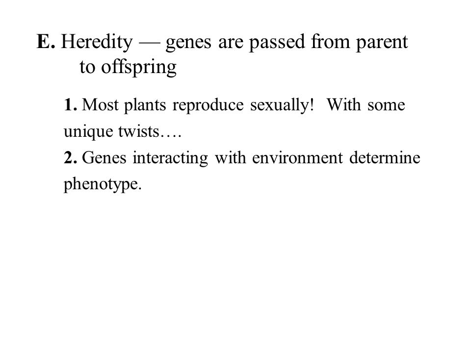 E. Heredity — genes are passed from parent to offspring 1.