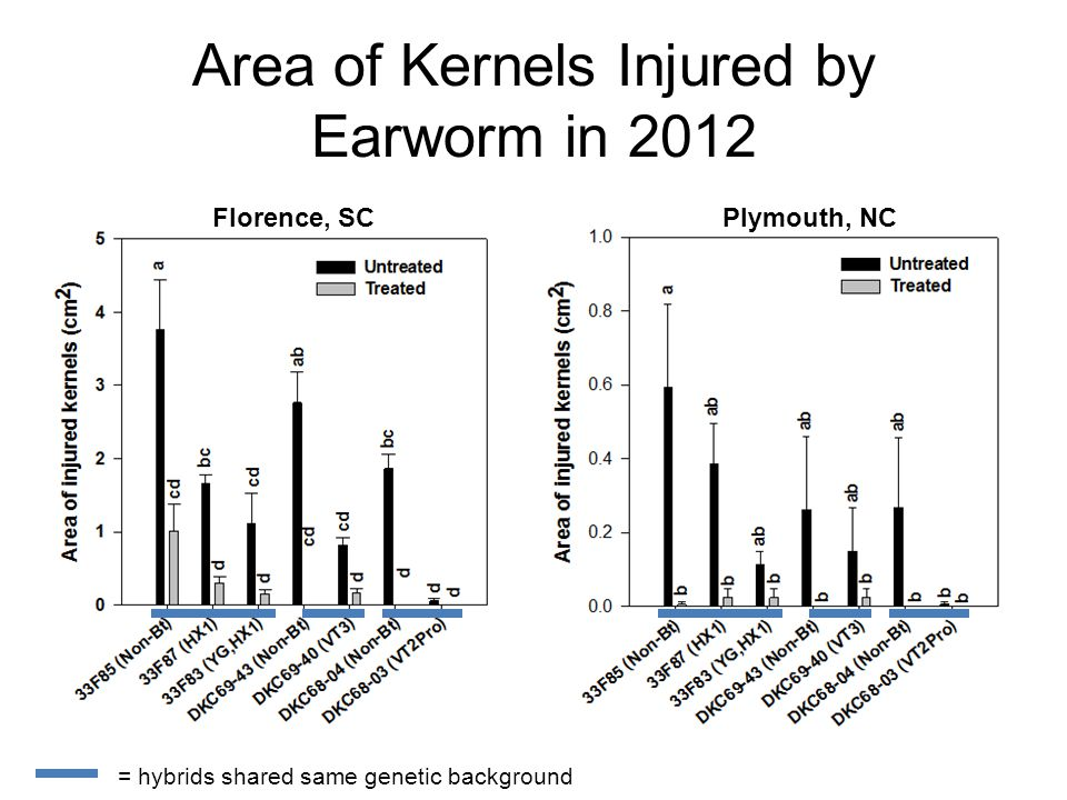 Florence, SCPlymouth, NC Area of Kernels Injured by Earworm in 2012 = hybrids shared same genetic background