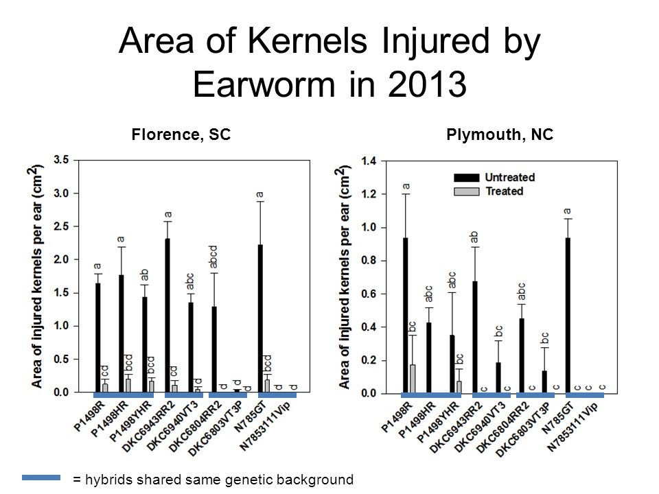 Florence, SCPlymouth, NC Area of Kernels Injured by Earworm in 2013 = hybrids shared same genetic background