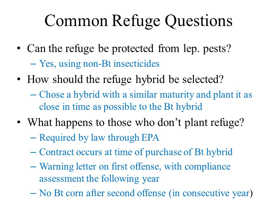 Common Refuge Questions Can the refuge be protected from lep. pests? – Yes, using non-Bt insecticides How should the refuge hybrid be selected? – Chos