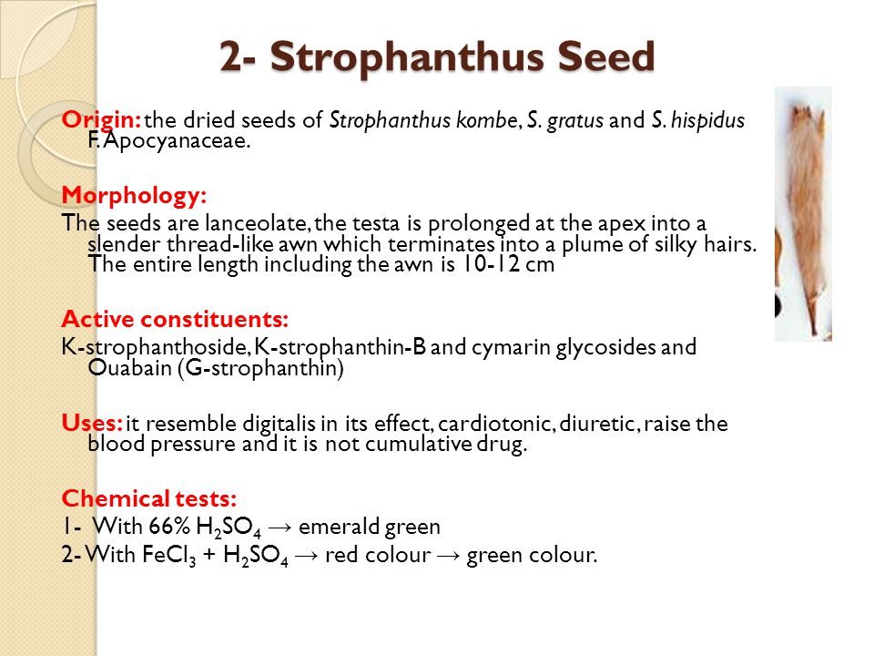 2- Strophanthus Seed Origin: the dried seeds of Strophanthus kombe, S. gratus and S. hispidus F. Apocyanaceae. Morphology: The seeds are lanceolate, t