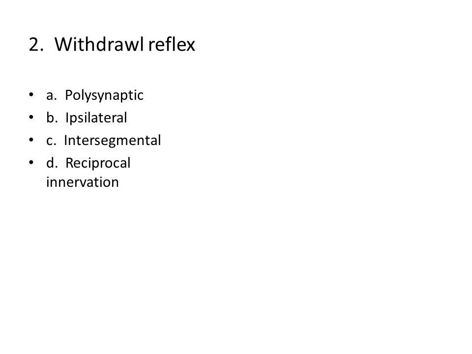 2. Withdrawl reflex a. Polysynaptic b. Ipsilateral c. Intersegmental d. Reciprocal innervation