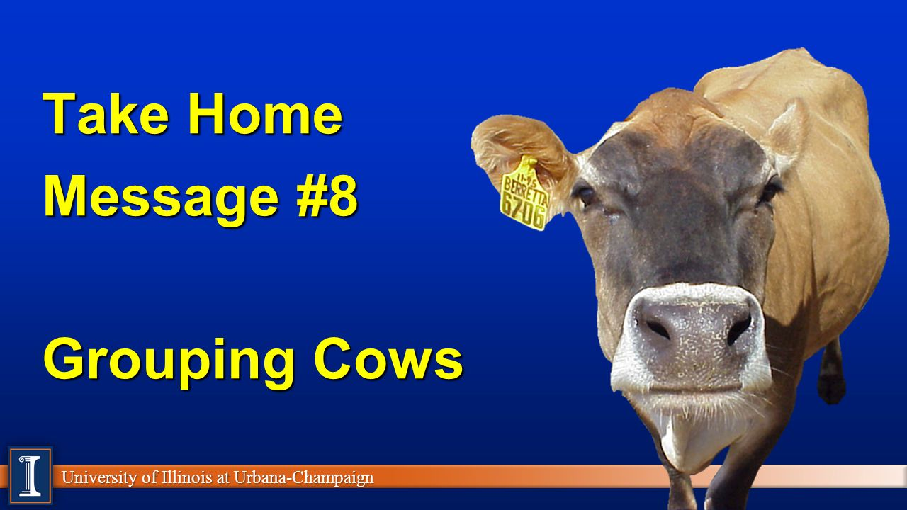 University of Illinois at Urbana-Champaign Take Home Message #8 Grouping Cows