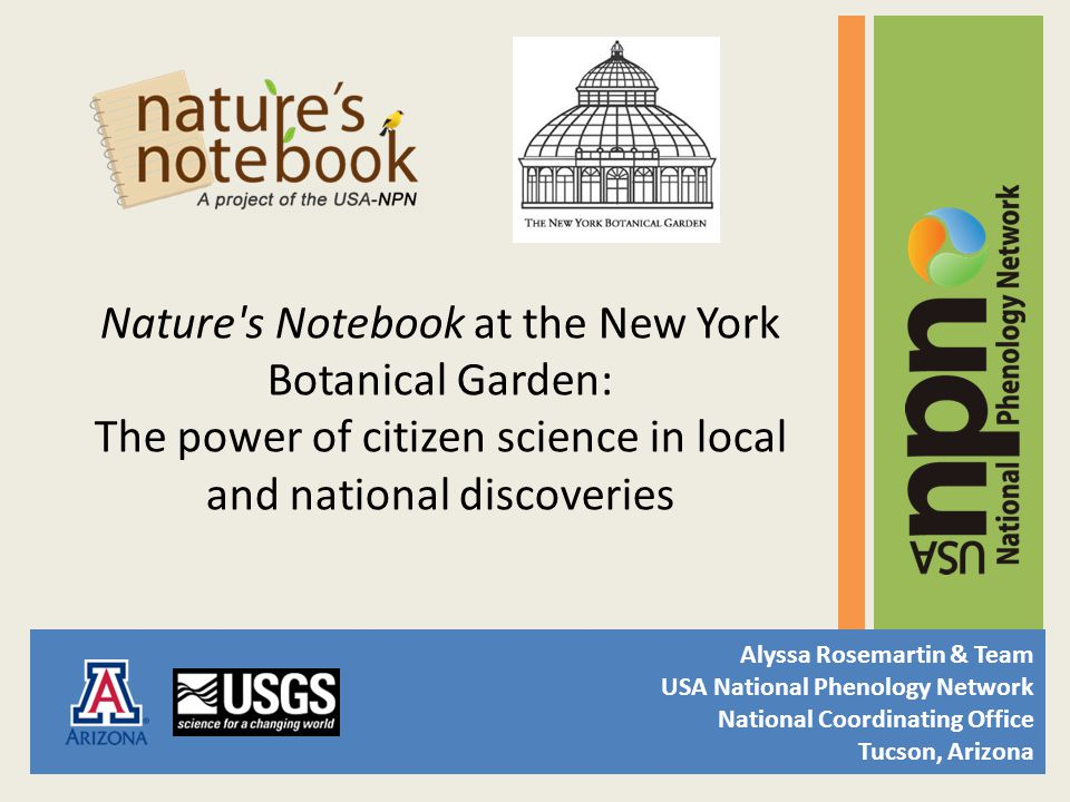 Nature s Notebook at the New York Botanical Garden: The power of citizen science in local and national discoveries Alyssa Rosemartin & Team USA National Phenology Network National Coordinating Office Tucson, Arizona