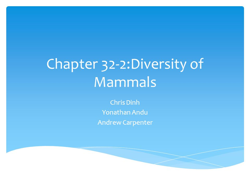 Mammalia  The class Mammalia contains about 4500 species  Very diverse  3 groups of living mammals: Monotremes, marsupials, and placentals  Groups differ in means of reproduction and development