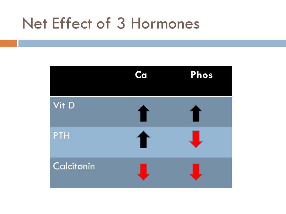 Net Effect of 3 Hormones CaPhos Vit D PTH Calcitonin
