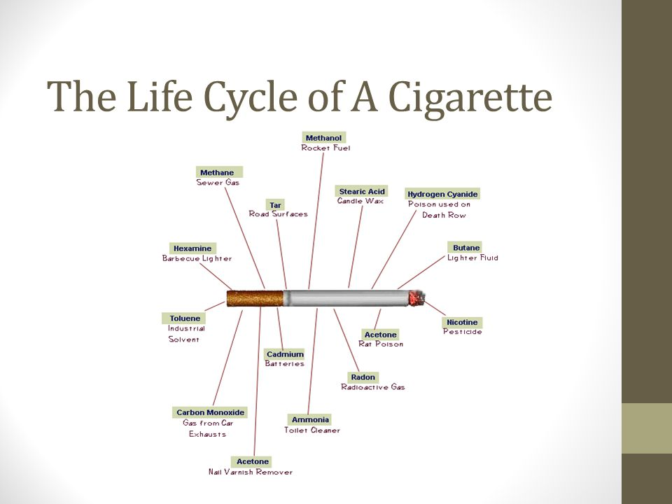 The Life Cycle of A Cigarette