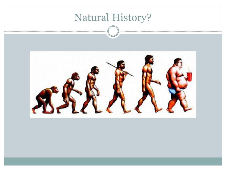 Natural History?