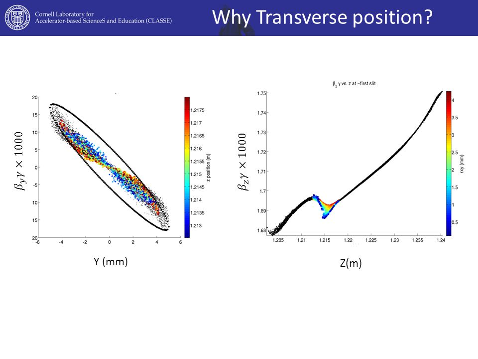 Why Transverse position Y (mm) Z(m)