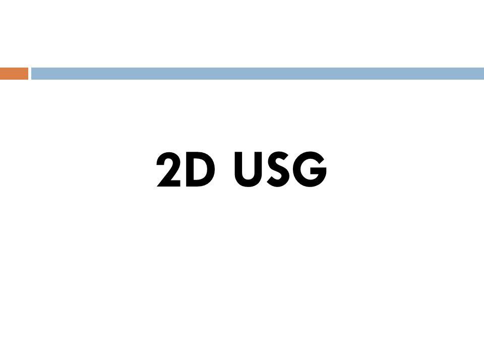 2D USG