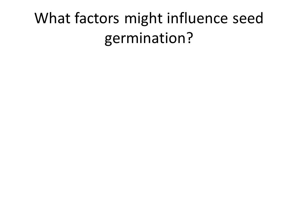 What factors might influence seed germination?