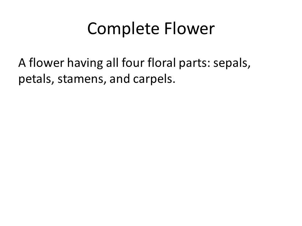 Complete Flower A flower having all four floral parts: sepals, petals, stamens, and carpels.