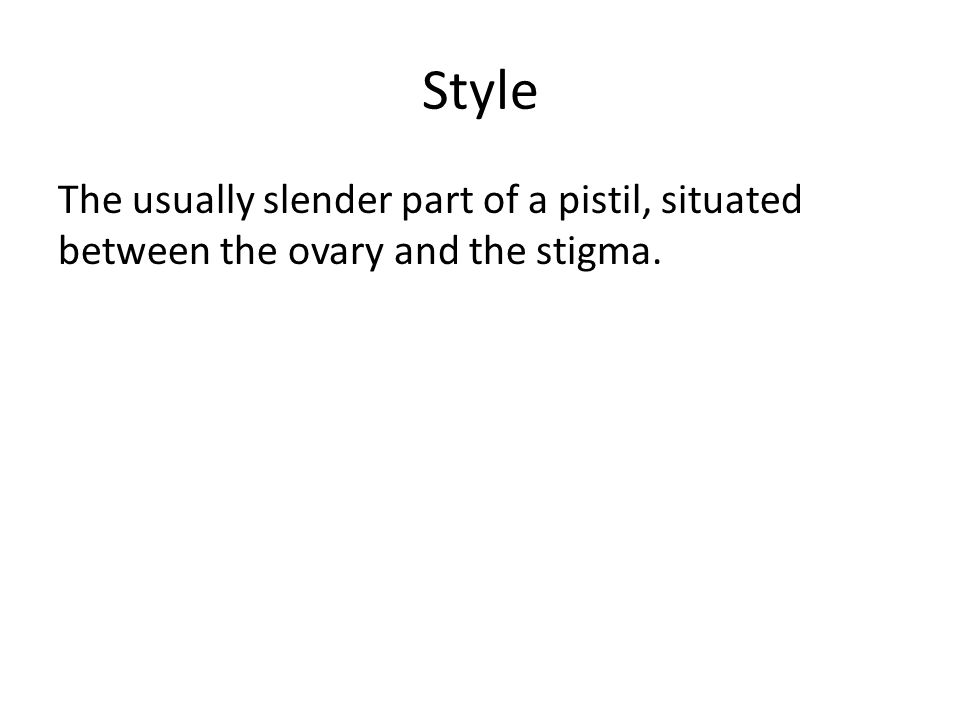 Style The usually slender part of a pistil, situated between the ovary and the stigma.